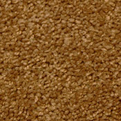 Special Apartment Carpet - 10