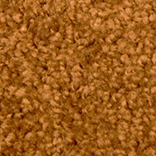 Special Apartment Carpet - 12